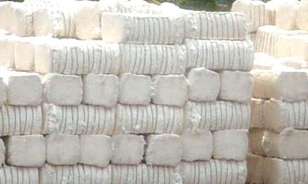 Cotton output estimated at 377 lakh bales in 2017-18