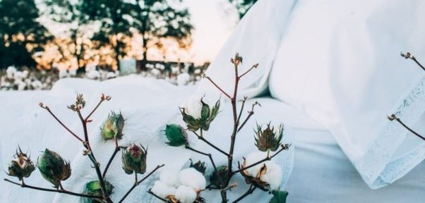 Lower cotton prices to support textile sector profitability