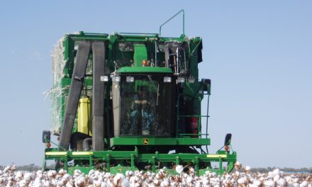 Pak, Indian growers tour Aussie cotton sector in Narrabri