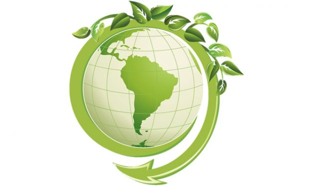 HanesBrands bags award for excellence in sustainability