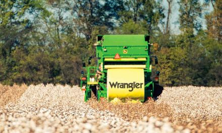 Wrangler® report shows potential of sustainability data in agricultural supply chains
