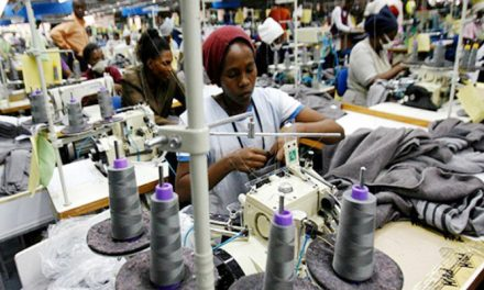 Textile exports to the US stagnate, macadamia up