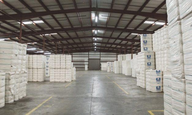 US cotton exports highest since 2005-06