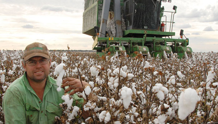 LoRa tech helping cotton growers in Australia
