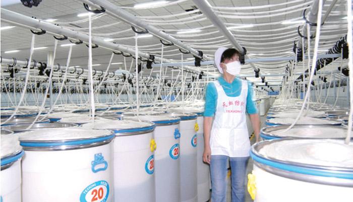 Texhong Textile acquires Winnitex