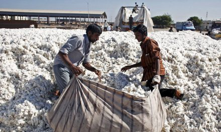 Textile exports face headwinds