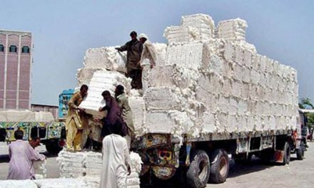 Pak making efforts to achieve target of 15 mn cotton bales