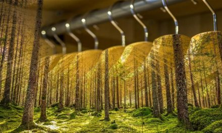 Sustainability in fashion slowed by a third
