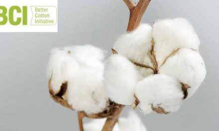 Better Cotton accounts for 19 per cent of global production