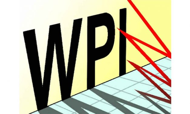 WPI inflation for apparel drops 0.4 per cent in June