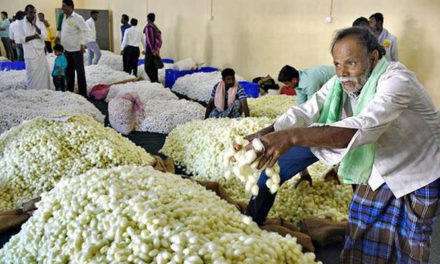 India to become completely self-sufficient in silk