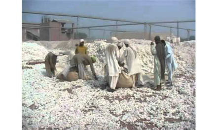 Pak association demands withdrawal of duty, taxes on cotton import