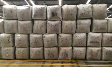 Australian wool auction sales decrease