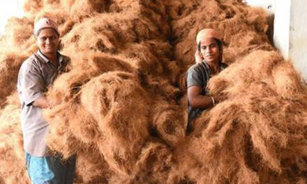Coir units to make products under cluster project