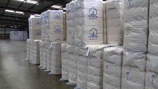 US Cotton export high on demand of China